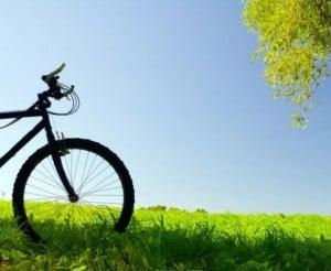 Bici ed erba