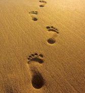 Dio cammina a piedi