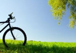 Bici campi