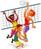 Volley vigonovo
